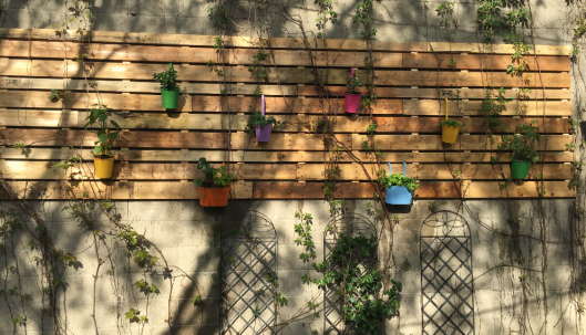 My garden wall with veggies, herbs and berries.